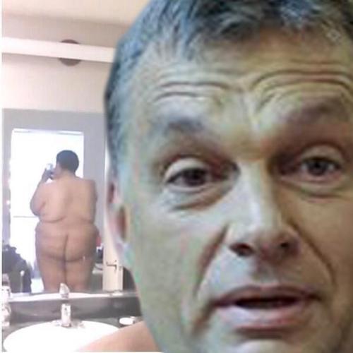vidám cum és a pénisz leesik)