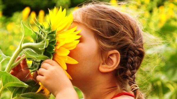 Gyermekorvosi differenciáldiagnosztika | Gyermekgyógyászat | Medicina Könyvkiadó Webshop