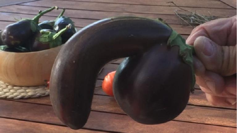 Nincs közönséges péniszem)