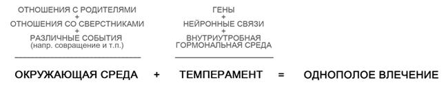az erekció vonzereje)