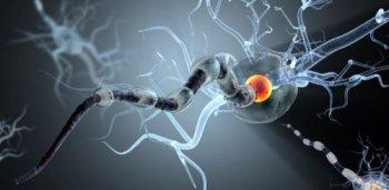 SpermaPlant használati utasítás - Tünetek