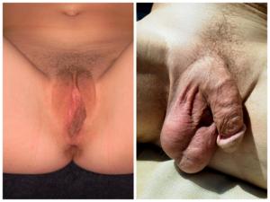 pénisz meztelen nő