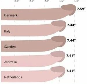 pénisz vastagság mérések)
