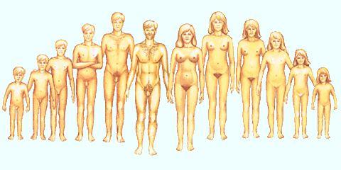merevedés női mellbimbó