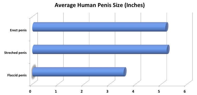 milyen termékekre van szükség a péniszhez szivattyú a pénisz megnagyobbodása árához